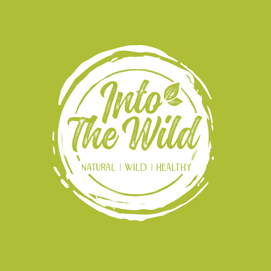 into the wild logo design